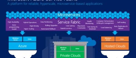 마이크로소프트, 애저 PaaS 기반 Service Fabric 오픈 소스화 by RAPTER