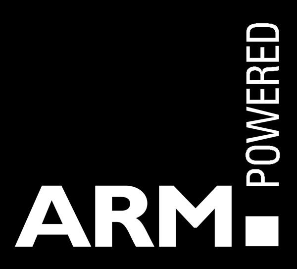 ARM2.jpg