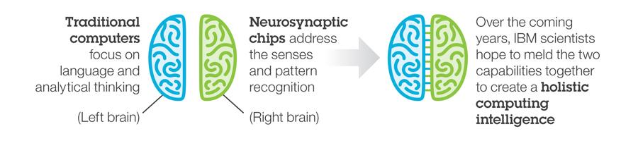 brain_banner_infographic.jpg