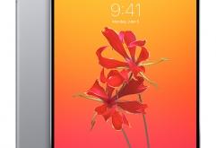 애플의 차기 아이패드 프로(iPad Pro)는 얼굴 인증 기능인 Face ID에 대응한다고밝혀지고 있는데최근 발표된 iOS 12 beta 1에서 차기 아이패드에도 노치 디자인이 적용될 것으로 보이는 소스가 발견됐다...